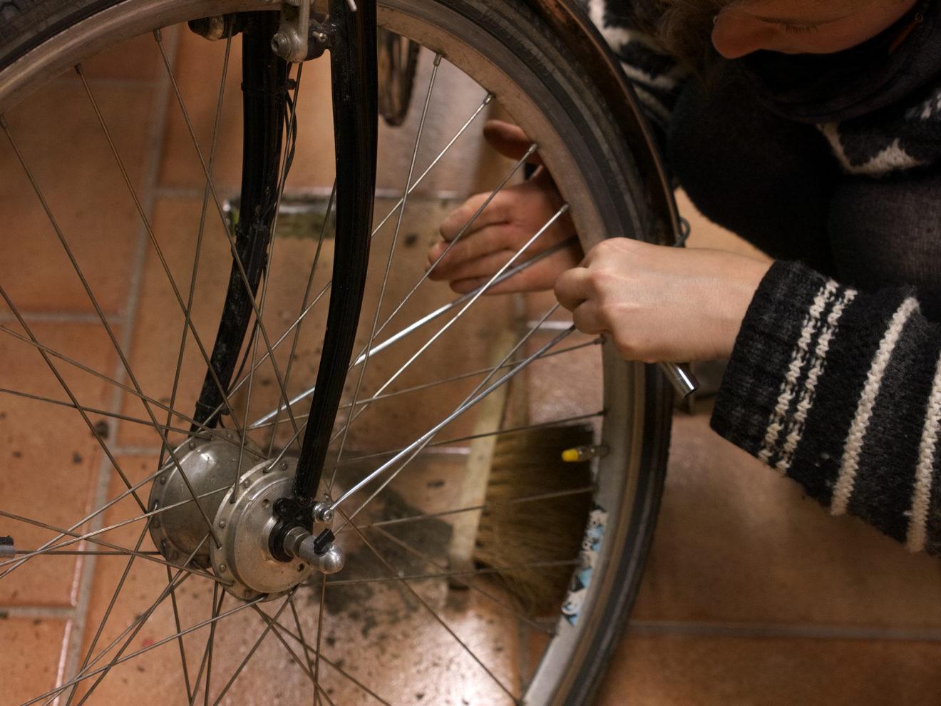 Bild: Lisi repariert Ihr Fahrrad